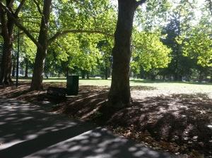 Jardin Carlton